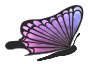 Flying purple butterfly (without PNG iCCP chunk)